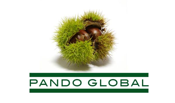Cartera Pando Global
