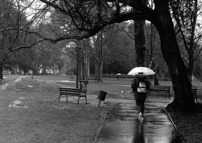Días de lluvia #14