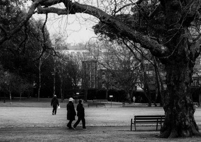Parque de Ferrera