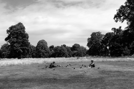 Hyde Park III